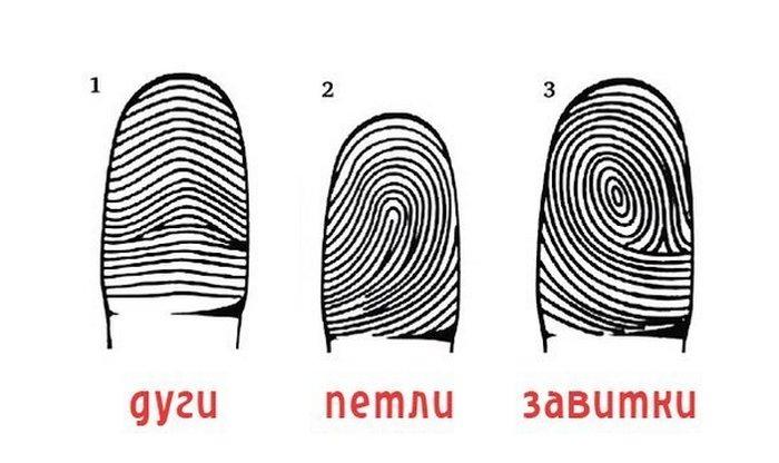 Узнаем характер по отпечаткам пальцев