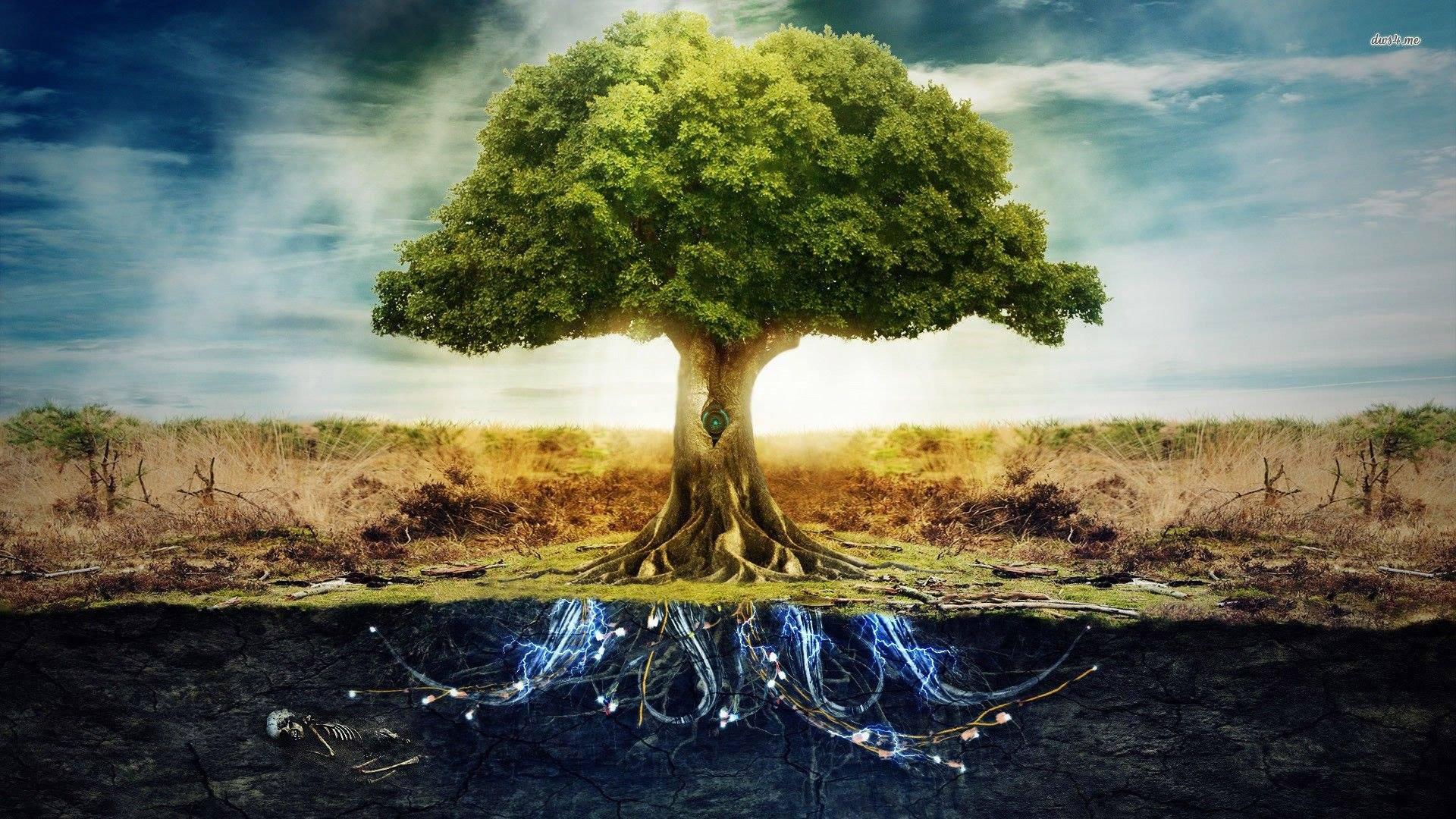 Древо Рода и Сила его. Почему Род помогает не всем?