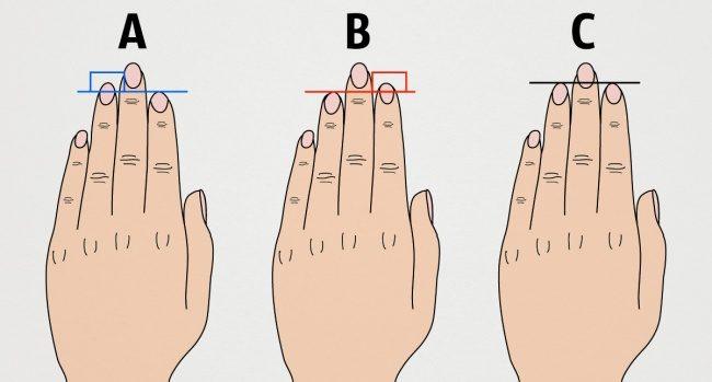 Что длина пальцев руки говорит о характере