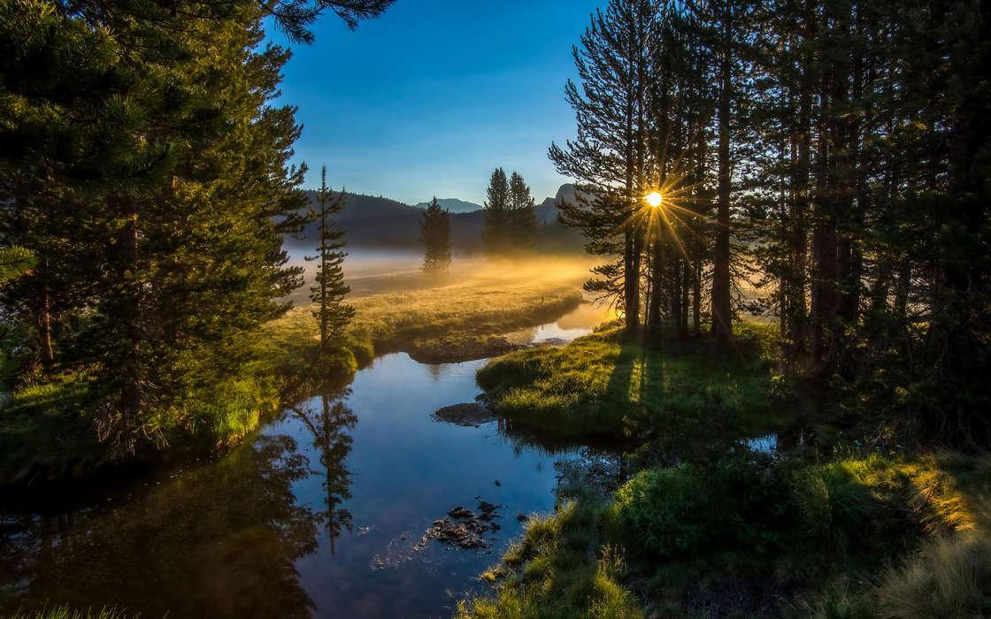 Духовный Взгляд На Природу
