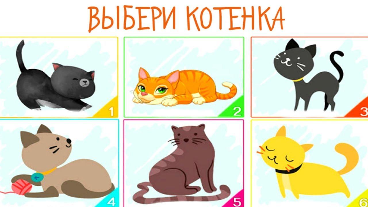 Выберите кошку и узнайте всю правду о себе!
