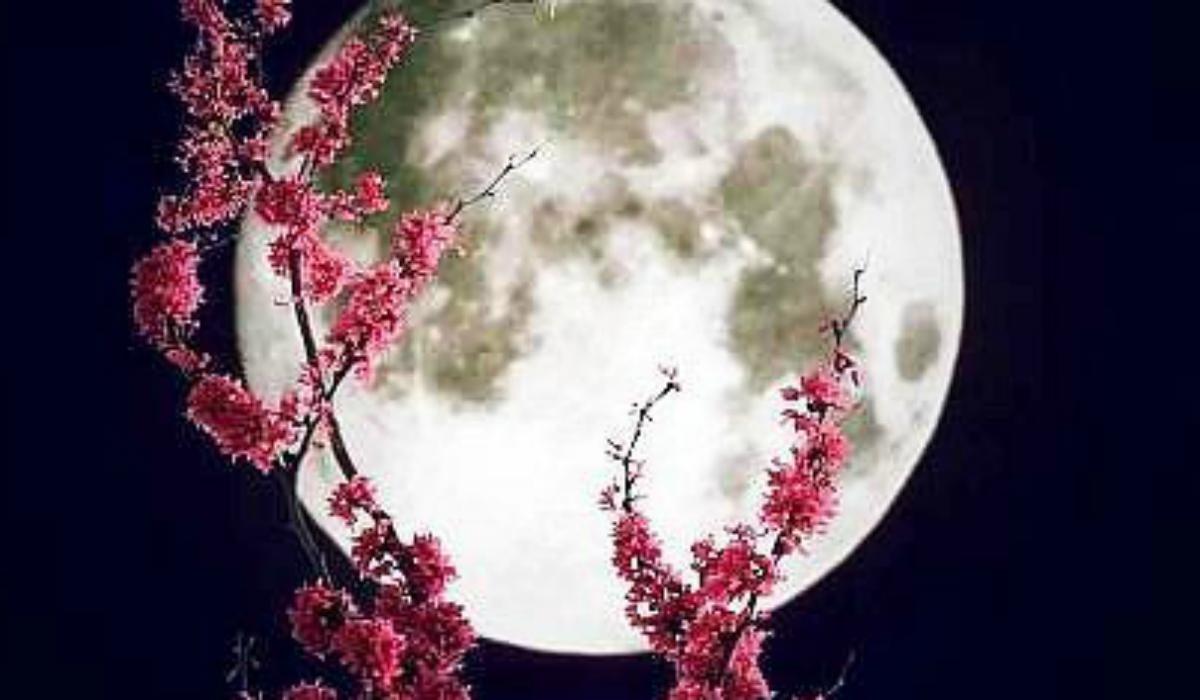Ритуал полнолуния - 20 марта 2019