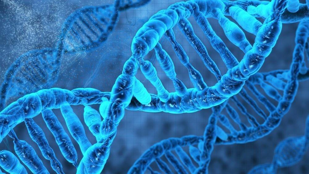 Влияние чувств человека на молекулу ДНК, или Как мы создаём свою Реальность?