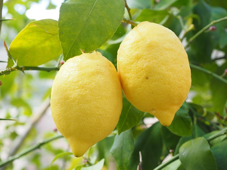 Магические свойства лимона