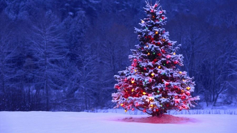 Языческие традиции в современном рождестве