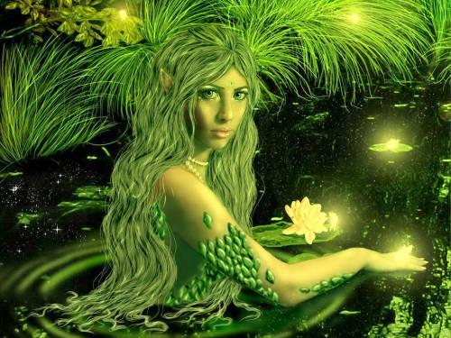 Как контактировать со своим духом природы в соответствии со знаком Зодиака
