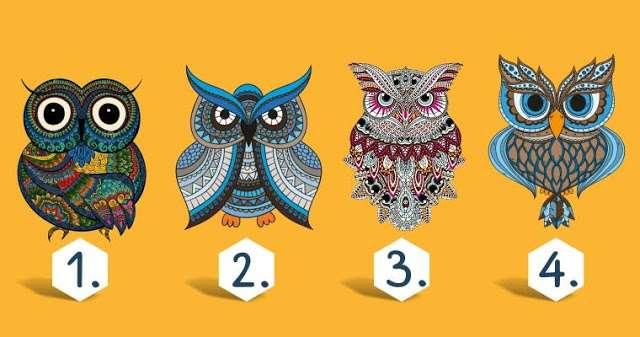 Тест: Выбери сову и узнай горькую правду о своем характере